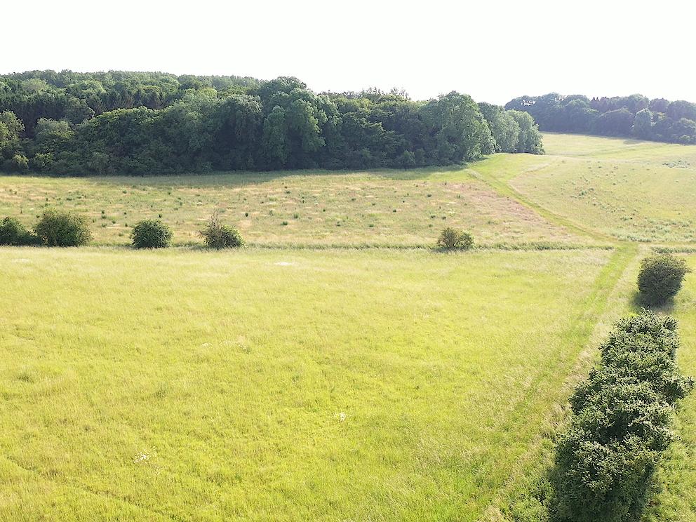 6 chestnut hill