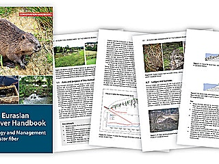 Beaver guide pages 3db6d0a8c65e0add717eef0d21a3ff3b