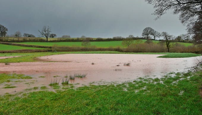 Flood meadows are vital for flood mitigation 768976c67294e783eba9de3765130cd2
