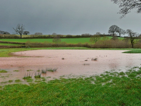 Flood meadows are vital for flood mitigation 768976c67294e783eba9de3765130cd2