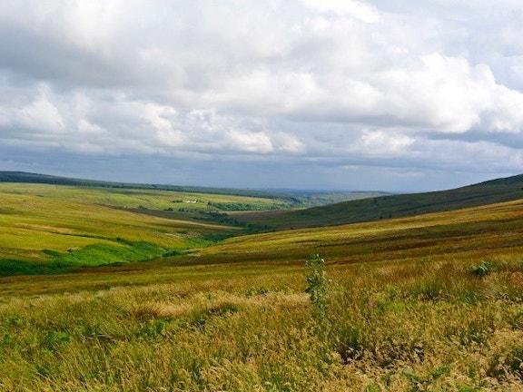 Langholm Moor Tom Hutton 9c826e7a408806c4ea6b40b0d37e4d42