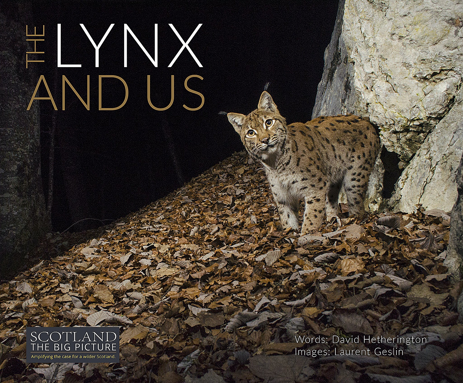 Lynx book cover