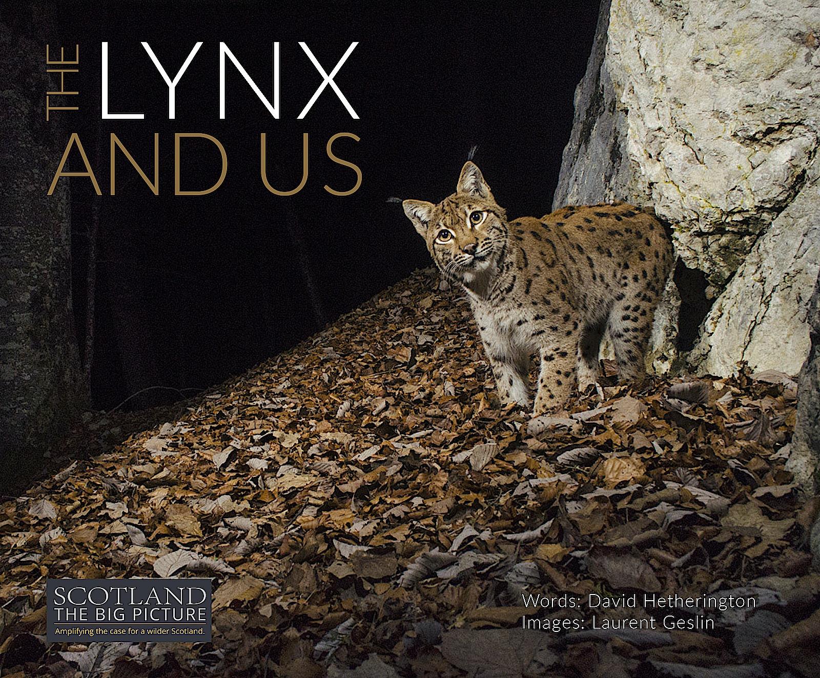 Lynx book cover