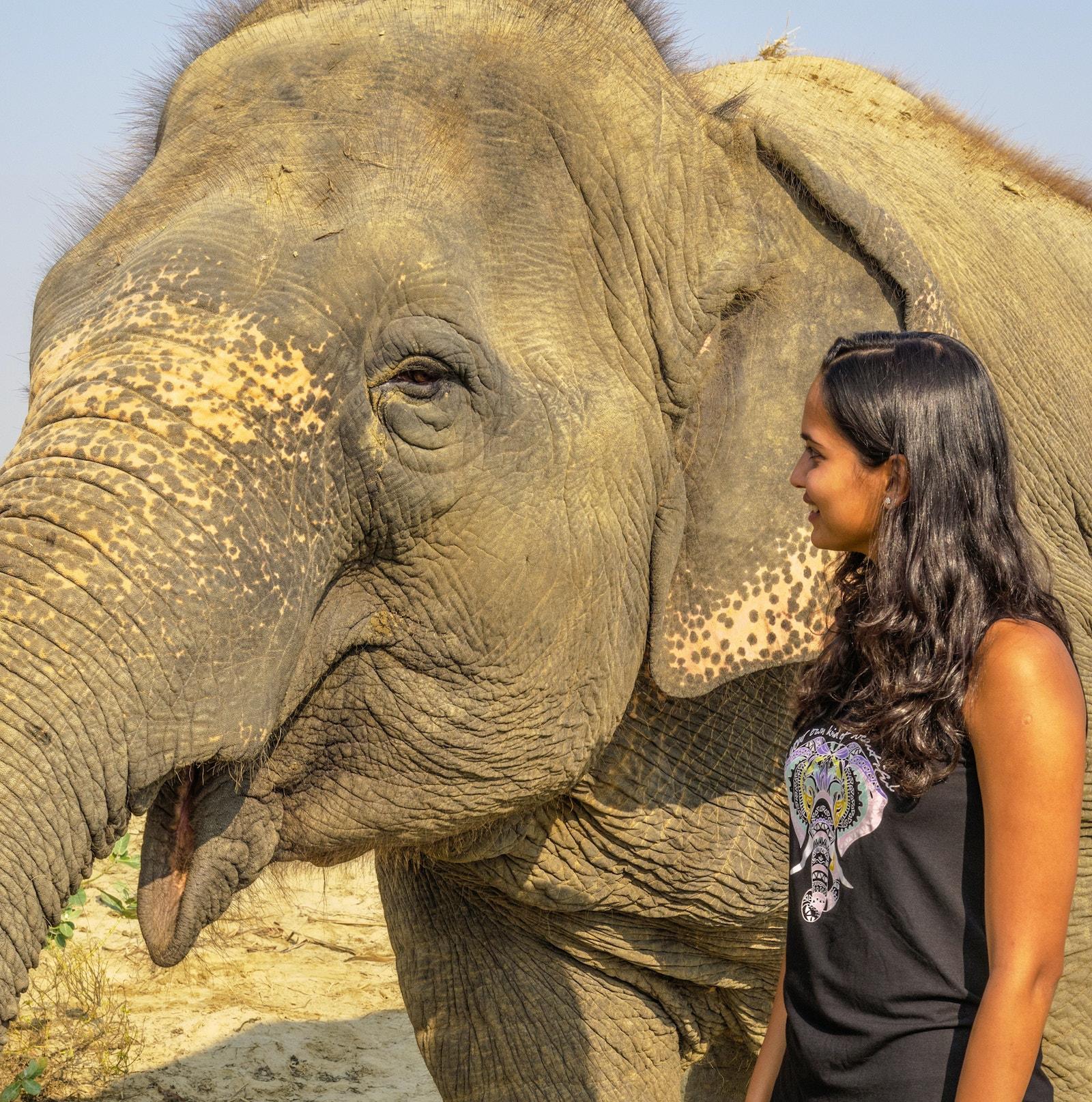Malaika Vaz elephant