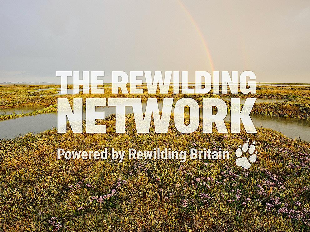 RB teaser Rewilding Network