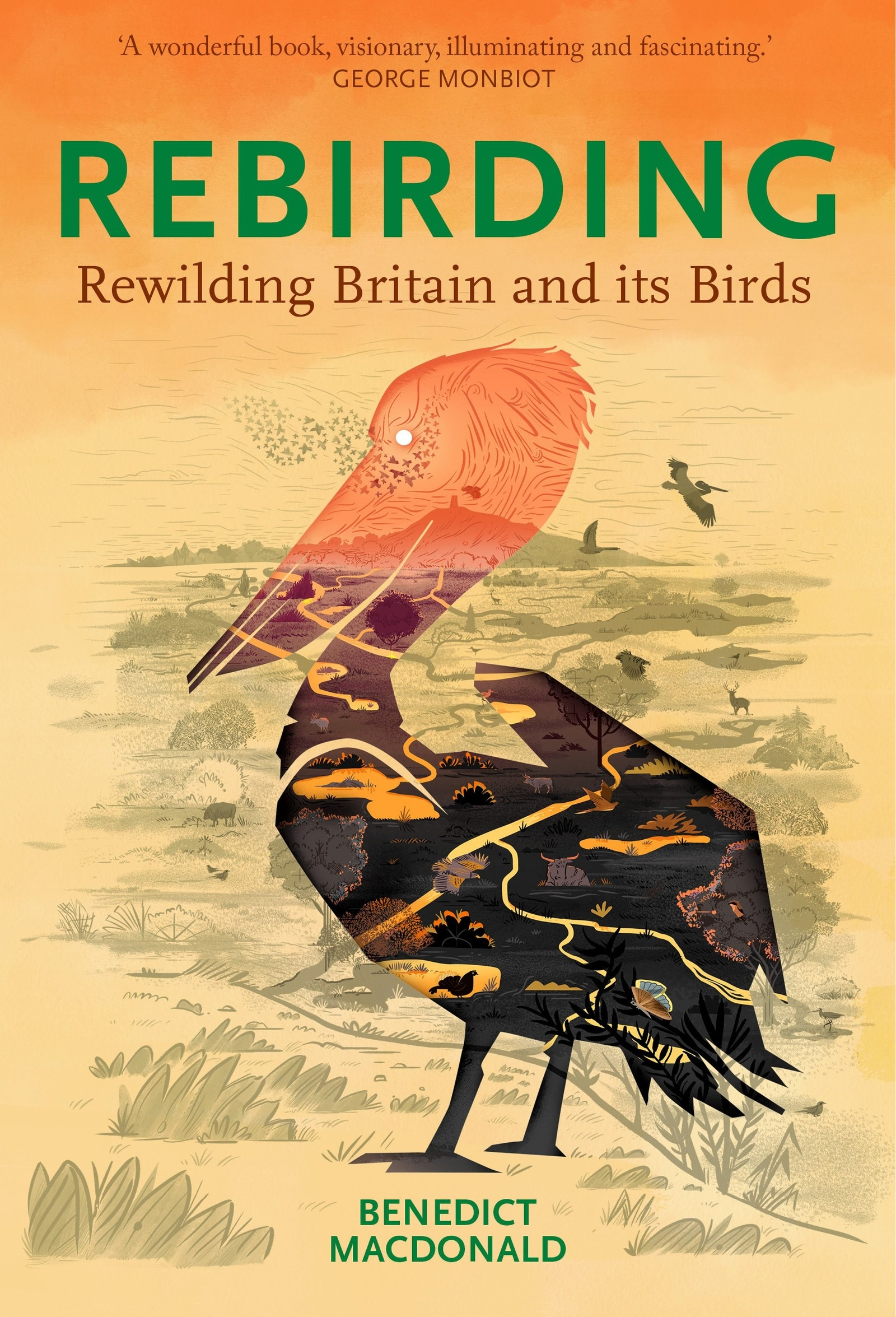 Rebirding Rewilding Britain and its Birds Macdonald front cover