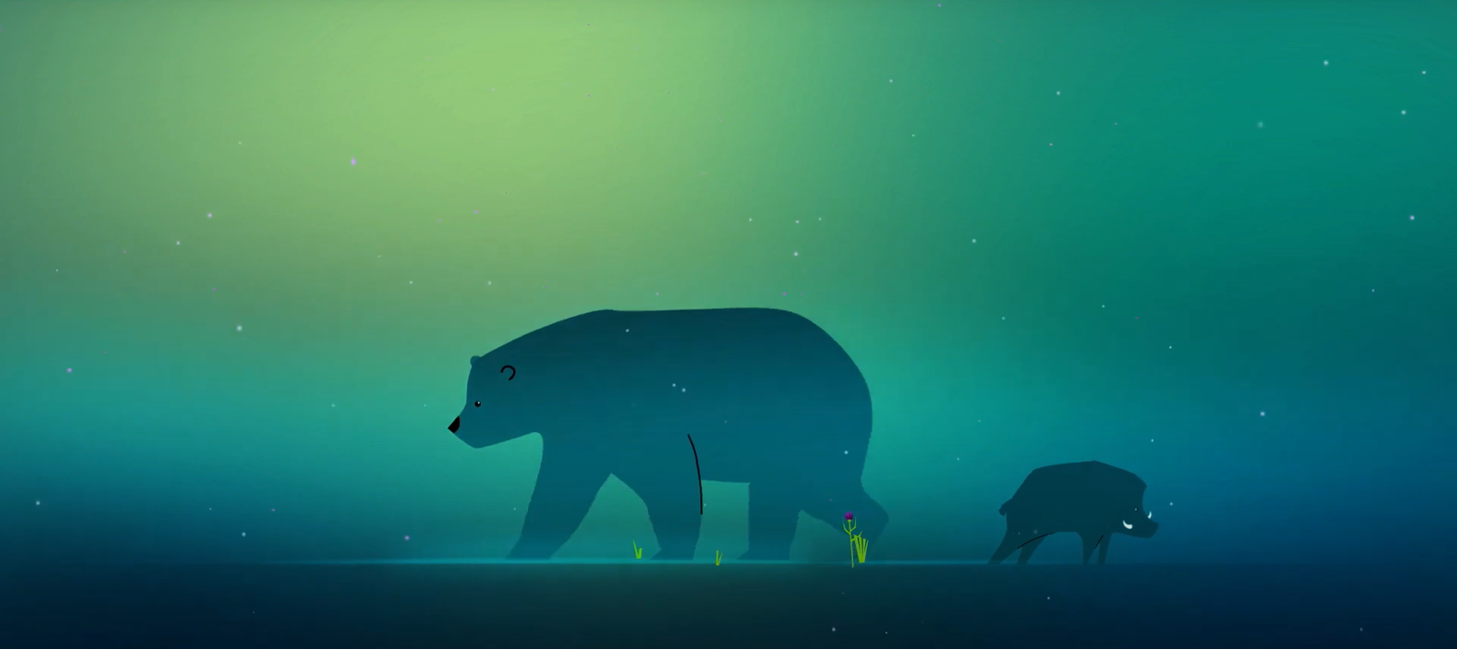 Rewild Nation bear