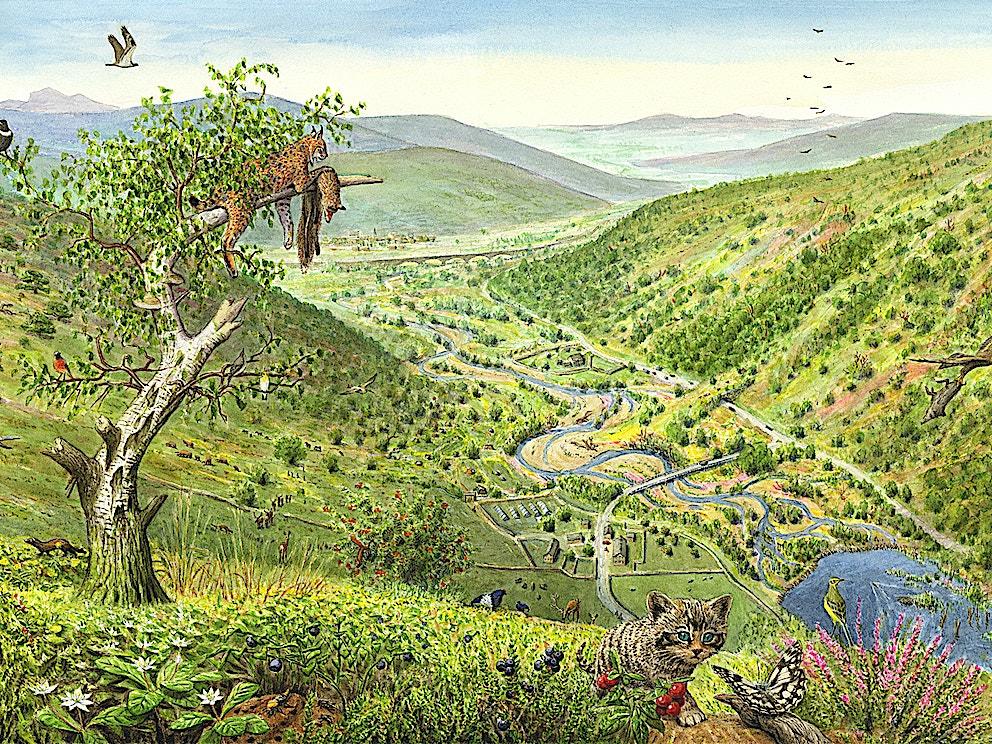 Uplands future