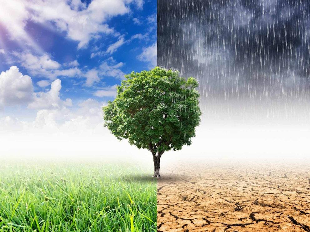 Climate action slider bg 01