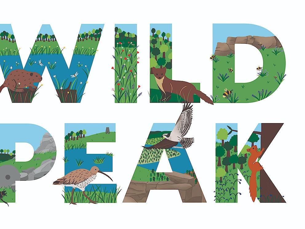 Logo wild peak