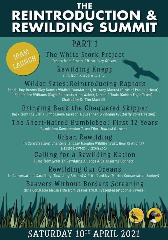 Rewilding summit poster