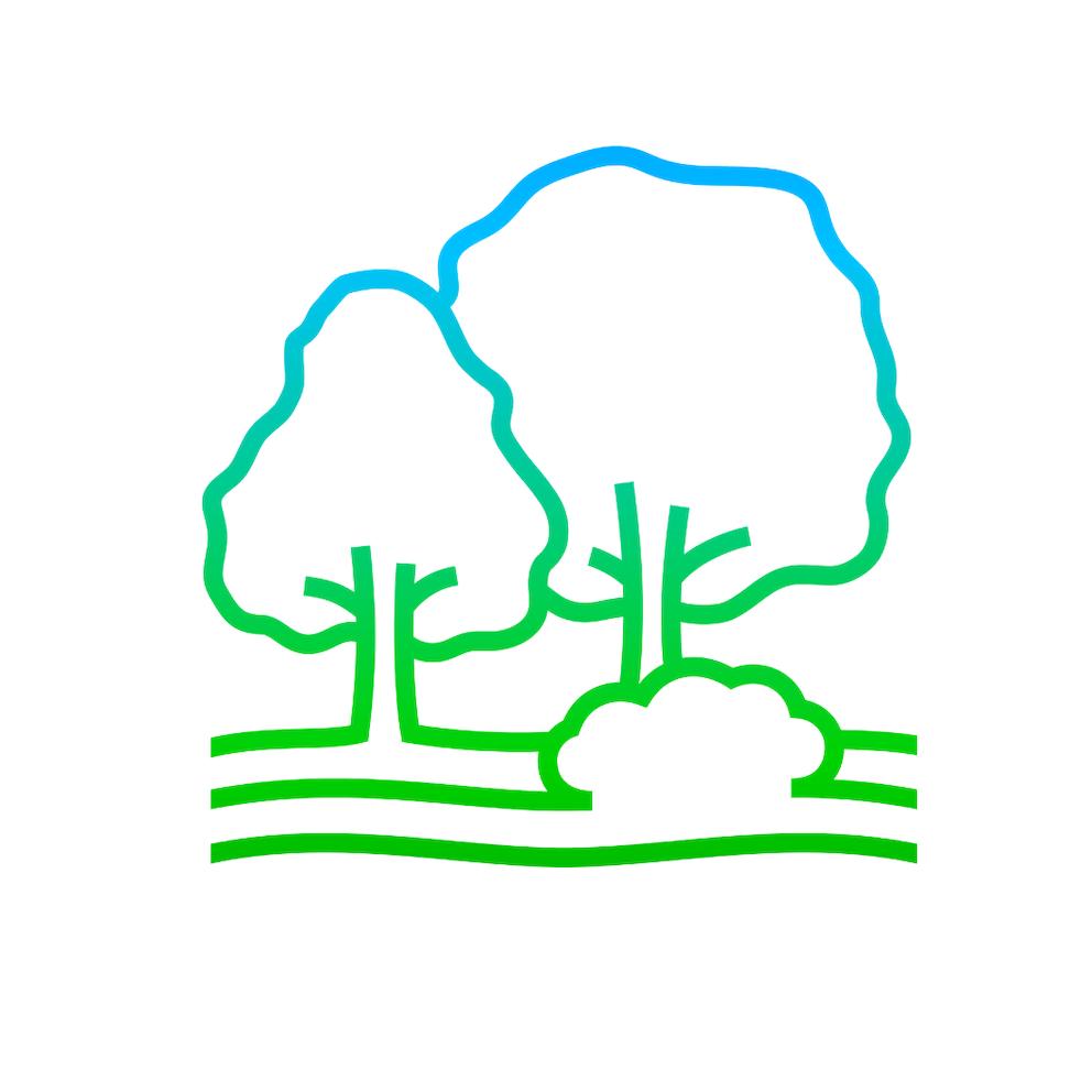 Woodland gradient